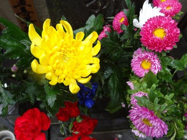 お彼岸のお墓参り「お花の選び方」 class=