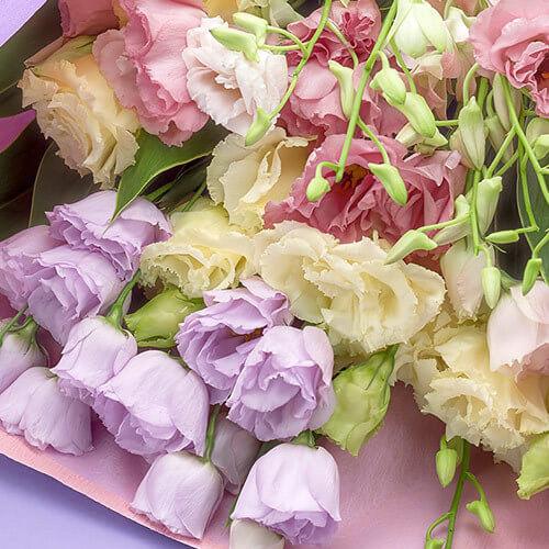 お悔み・お供えの花はどうすれば?お花の選び方のポイント class=